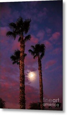 Morning Moon Metal Print by Robert Bales