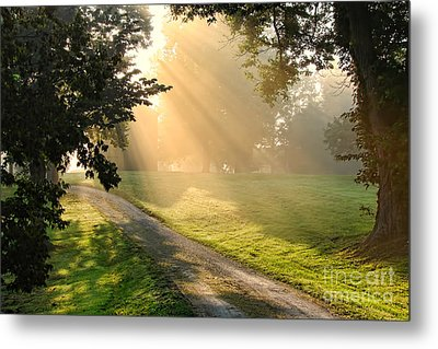 Morning On Country Road Metal Print