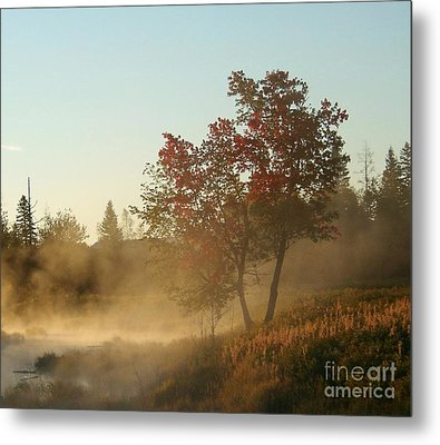 Morning On Middle River Metal Print