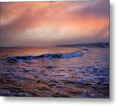 Morning On The Coast Metal Print by Roy  McPeak