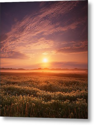 Morning On The Fen Metal Print