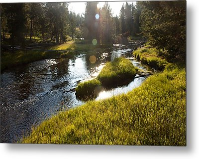 Morning On The Firehole Metal Print