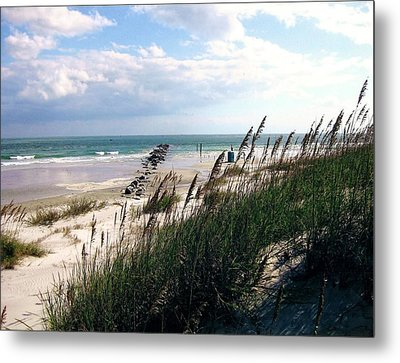 Morning Peace Metal Print by James McAdams