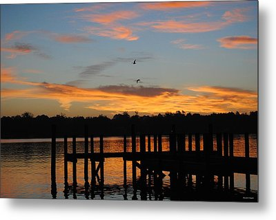 Morning Reflections Metal Print by Michele Kaiser