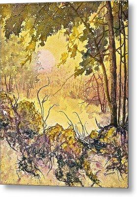 Morning Serenity Metal Print by Carolyn Rosenberger