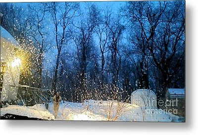 Snowy Morning Metal Print by Rose Wang