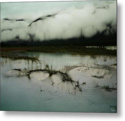 Morning Stillness Metal Print by Gun Legler