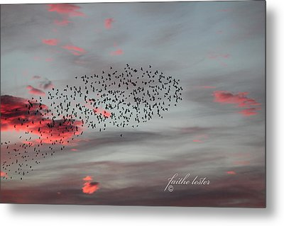 Morning Stretch Iv Metal Print by E Faithe Lester