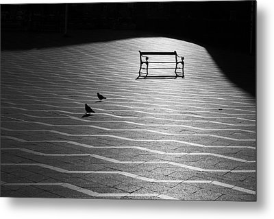 Metal Print featuring the photograph Morning Walk by Inge Riis McDonald
