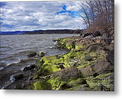 Moss Along The Hudson River Metal Print