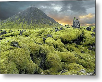 Moss-covered Lava Field Metal Print