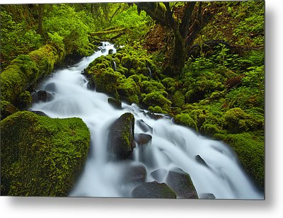 Mossy Creek Cascade Metal Print by Darren  White
