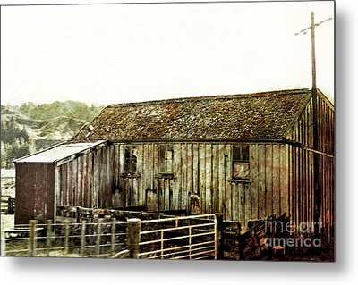 Mossy Shed Metal Print by Linde Townsend