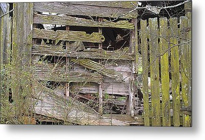 Metal Print featuring the photograph Mossy Wood by Lew Davis