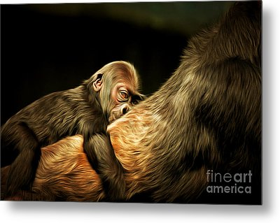 Mother And Child 20150210brun Metal Print by Wingsdomain Art and Photography