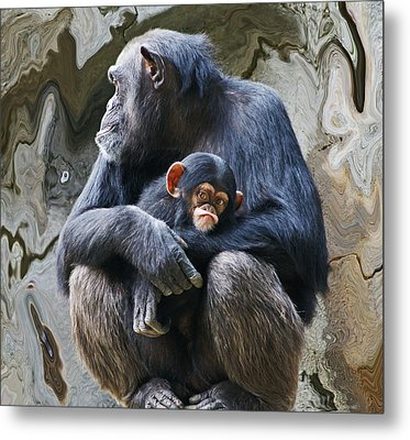 Mother And Child Chimpanzee 2 Metal Print