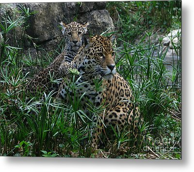 Mother And Child Metal Print by Greg Patzer