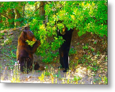 Mother Bear And Cub Metal Print by Jeff Swan