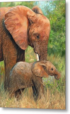 Mother Love 2 Metal Print by David Stribbling