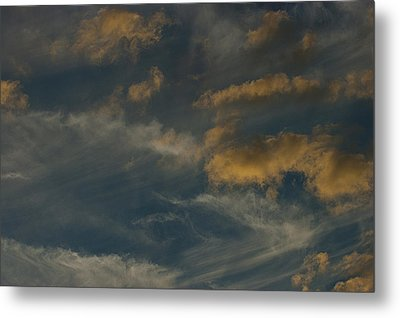 Mother Natures Art S-xix Metal Print by Sean Holmquist
