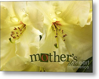Metal Print featuring the photograph Mothers Day by Jean OKeeffe Macro Abundance Art