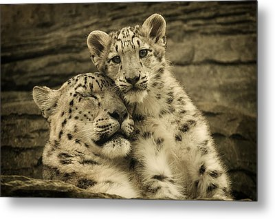 Mother's Love Metal Print