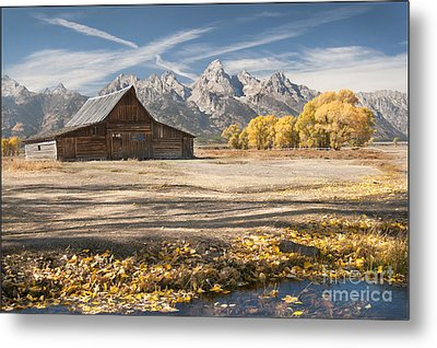 Metal Print featuring the photograph Moulton Barn Autumn by Wanda Krack