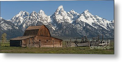 Moulton Barn - Grand Tetons I Metal Print by Sandra Bronstein