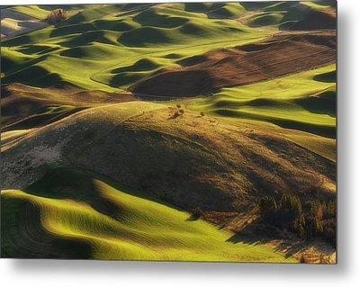 Mounds Of Joy Metal Print by Ryan Manuel