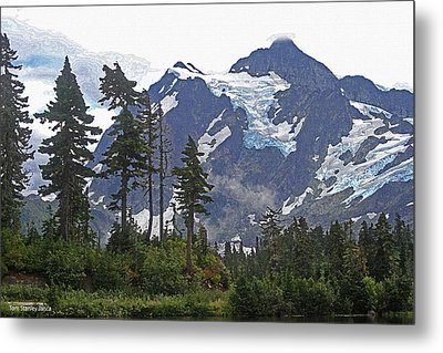 Metal Print featuring the photograph Mount Baker And Fir Trees And Glaciers And Fog by Tom Janca