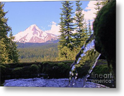 Mount Hood From Buzzard Point Metal Print by Cari Gesch