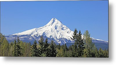 Mount Hood Mountain Oregon Metal Print by Jennie Marie Schell