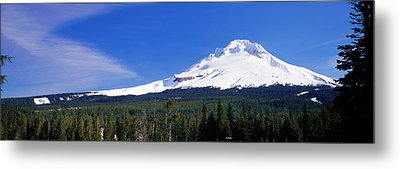 Mount Hood Or Usa Metal Print by Panoramic Images