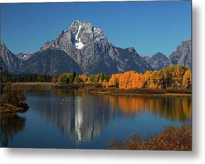 Mount Moran  Elevation 12605 Feet Metal Print by Ronald Phillips