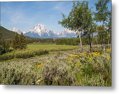 Mount Moran View Metal Print by Brian Harig