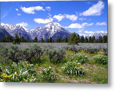 Mount Moran Wildflowers Metal Print by Brian Harig