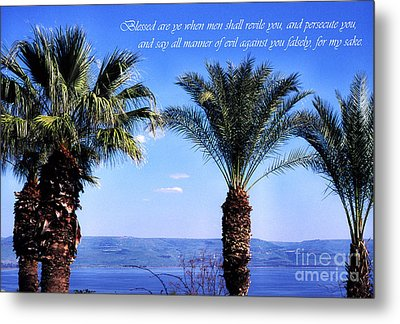 Mount Of The Beatitudes Metal Print by Thomas R Fletcher