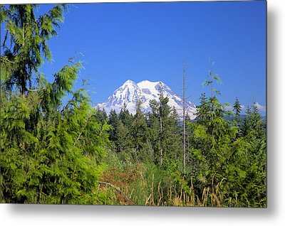 Metal Print featuring the photograph Mount Rainier by Gordon Elwell