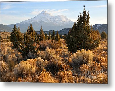 Mount Shasta In The Fall  Metal Print