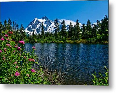 Mount Shuksan And Highwood Lake Metal Print by Dan Mihai