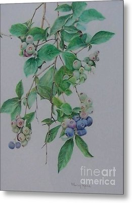 Mountain Blueberries Metal Print