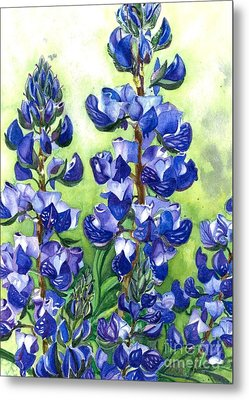 Metal Print featuring the painting Mountain Blues Lupine Study by Barbara Jewell
