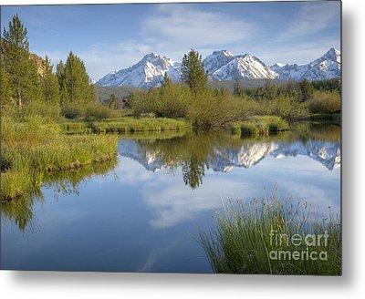 Mountain Daydream Metal Print by Idaho Scenic Images Linda Lantzy