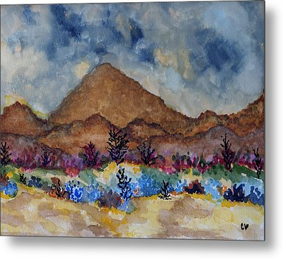 Mountain Desert Scene Metal Print by Connie Valasco