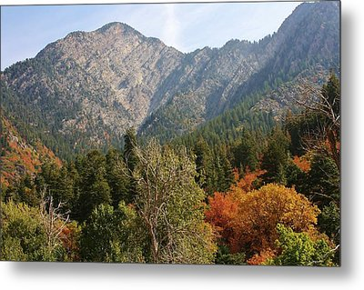 Mountain Escape Metal Print by Bruce Bley