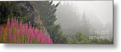 Mountain Fog Metal Print by Chuck Flewelling