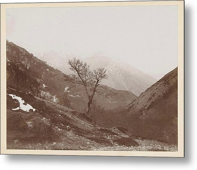 Mountain Landscape With Bare Tree And Some Snow Metal Print