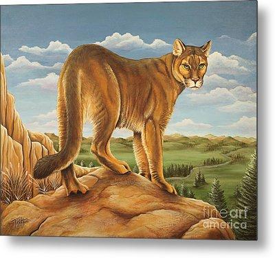Mountain Lion Metal Print by Tish Wynne