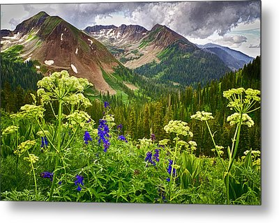 Mountain Majesty Metal Print by Priscilla Burgers