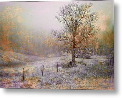 Mountain Mist II Metal Print by William Beuther
